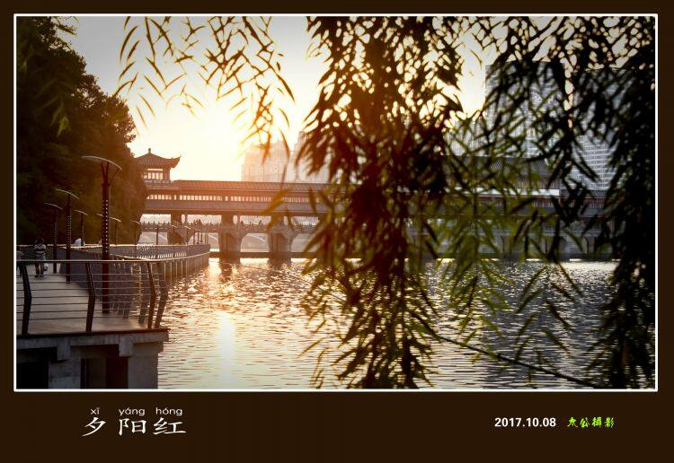 _DSC8225夕阳红.jpg