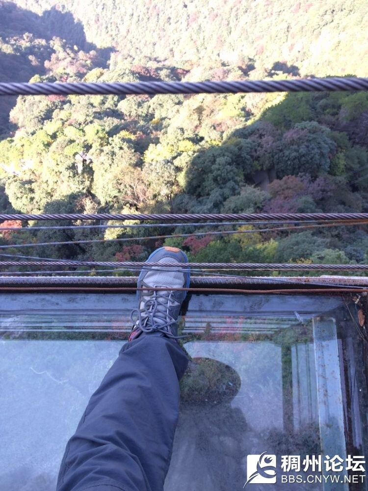 玻璃观景台.jpg