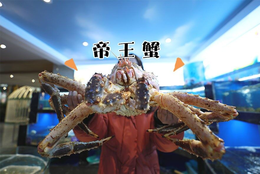 帝王蟹.jpg