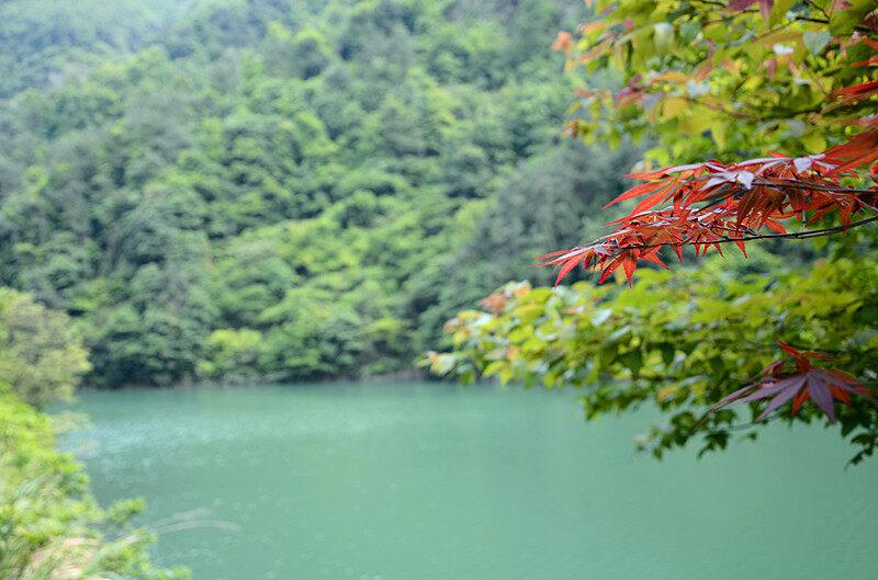 风景 065.jpg