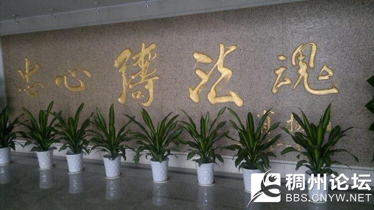 2015-08-21-1693_看图王.jpg