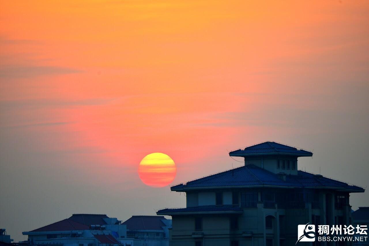 夕阳2.jpg