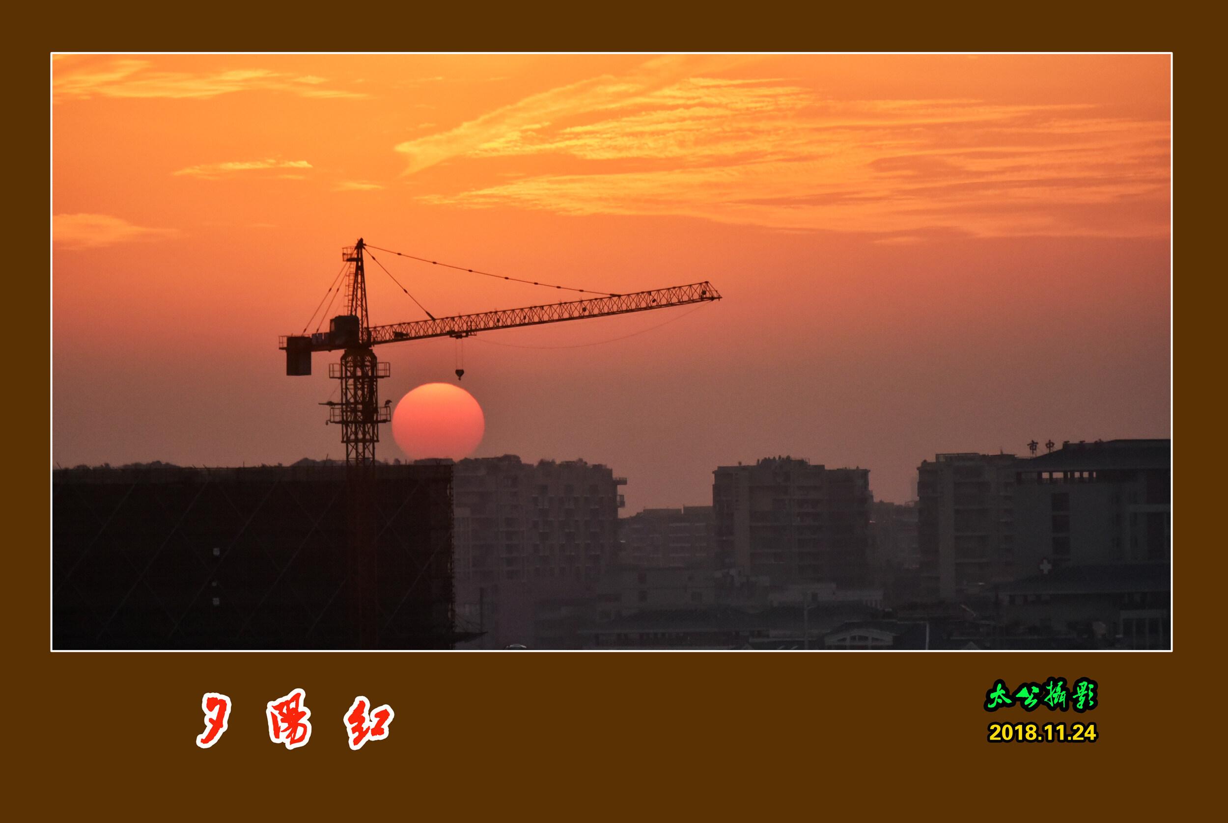 DSC_5007夕阳红.jpg 1.jpg