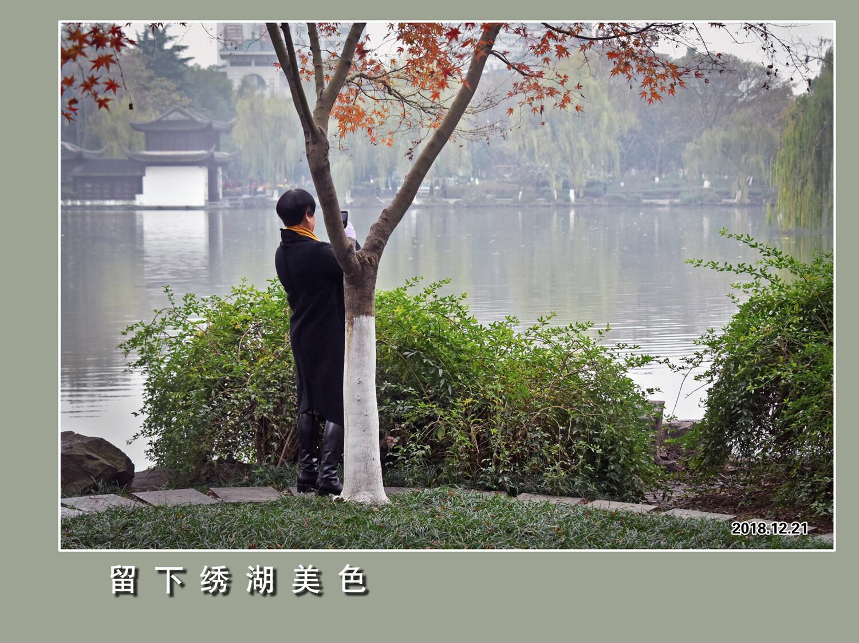 DSC_6242.jpg留下绣湖美色 2.jpg