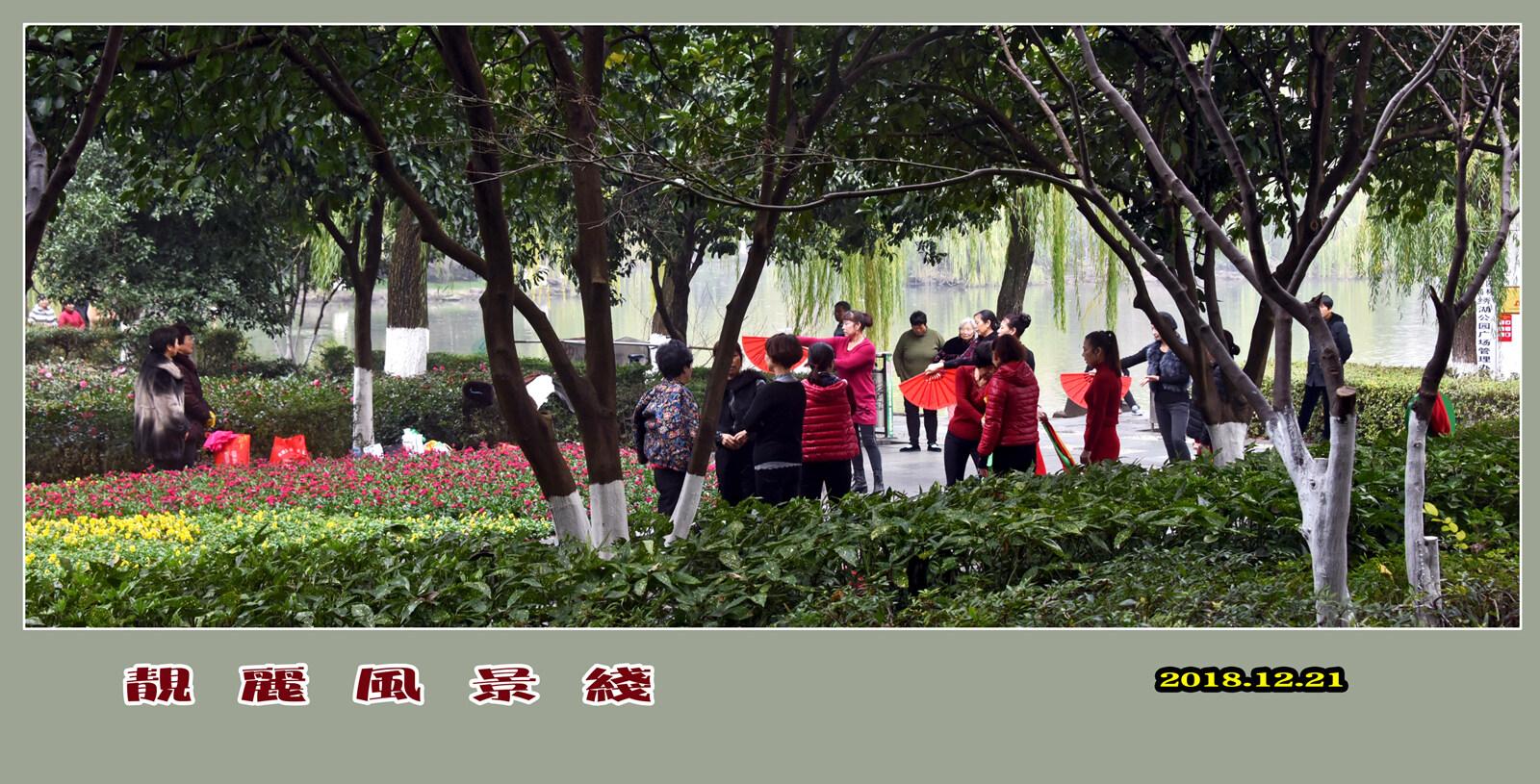 DSC_6270靓丽风景线 2.jpg