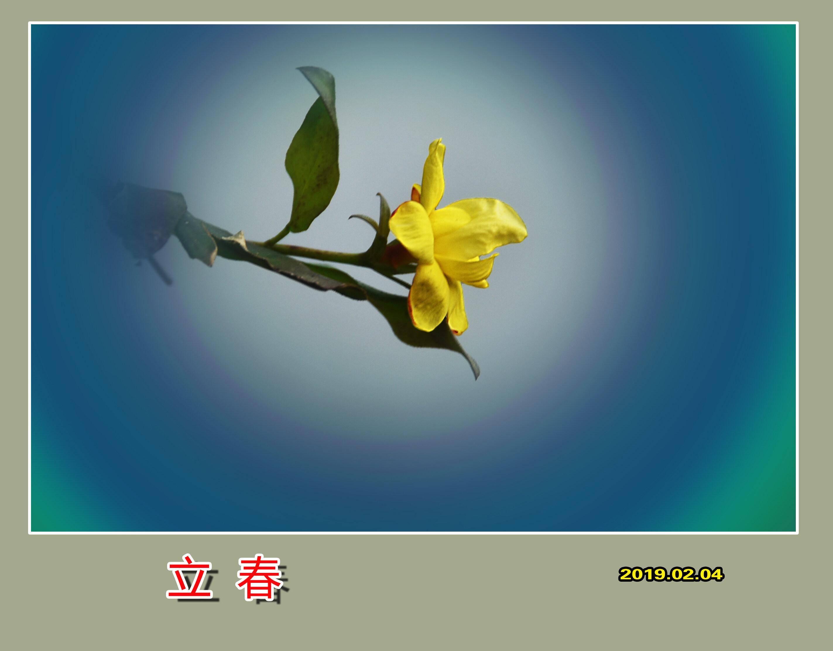 DSC_8709立春5.jpg