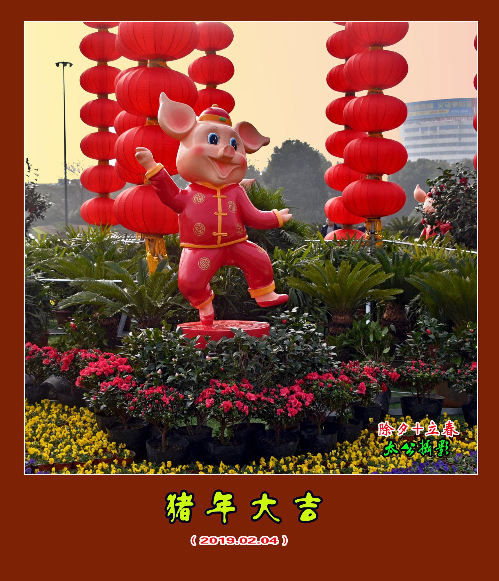 DSC_8790猪年大吉.jpg 1 2.jpg